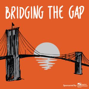 Briding-the-Gap.png